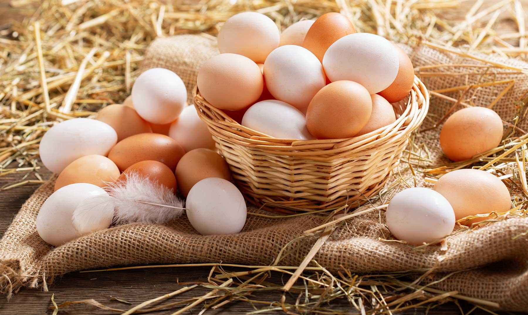 como saber si un huevo esta en buen estado