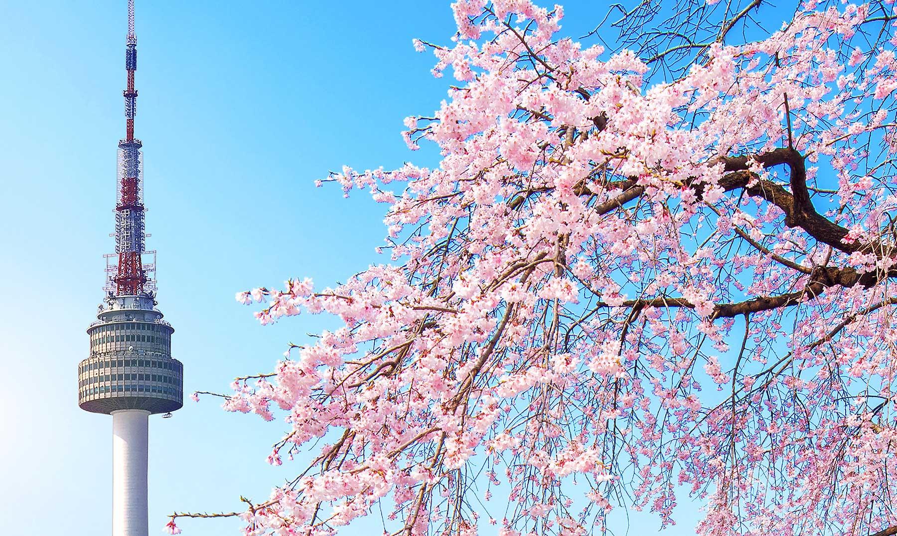 Aplicaciones para aprender coreano gratis